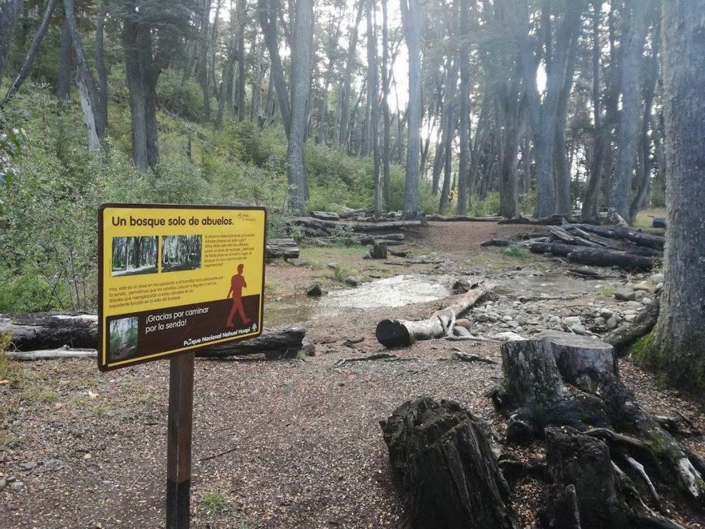 Bosque Cascada de los Duendes